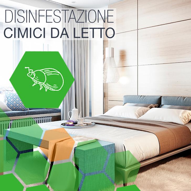 Ciciliano - Disinfestazione Cimici da letto Albergo a Ciciliano