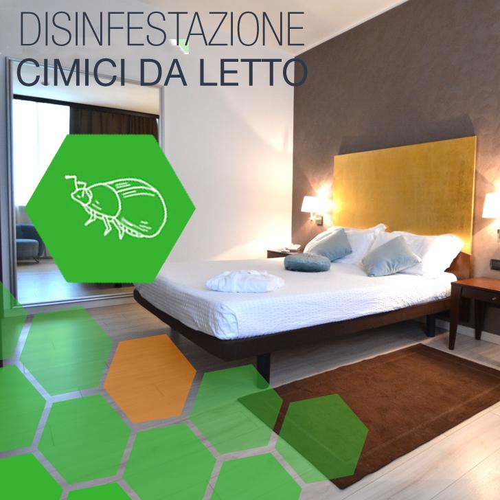 Ciciliano - Disinfestazione Cimici da letto Hotel a Ciciliano
