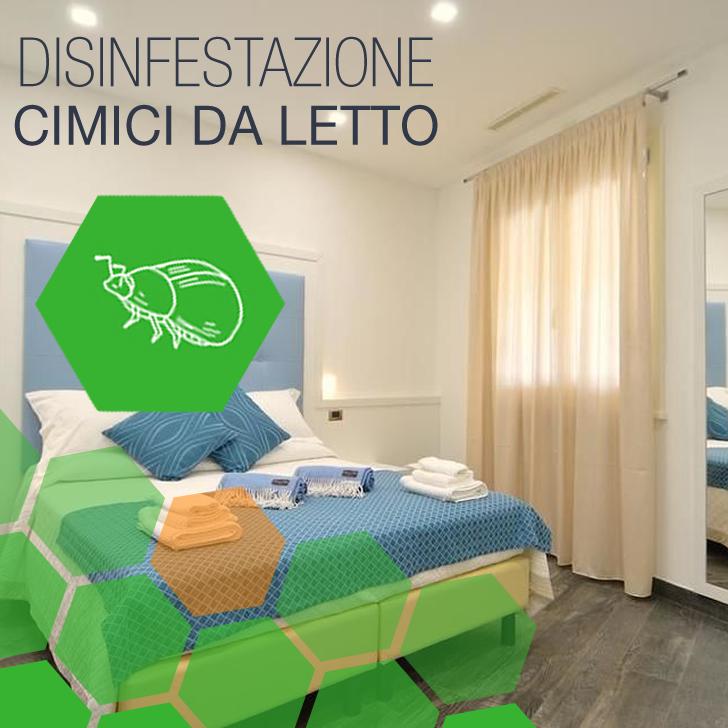 Ciciliano - Disinfestazione Cimici da letto BeB a Ciciliano