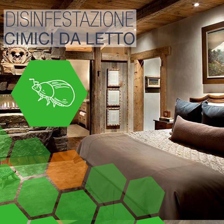 Metro Monte Compatri - Disinfestazione Cimici da letto Agriturismo a Metro Monte Compatri
